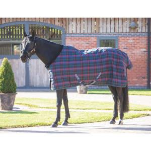 Tempest Plus 100g Stable Rug