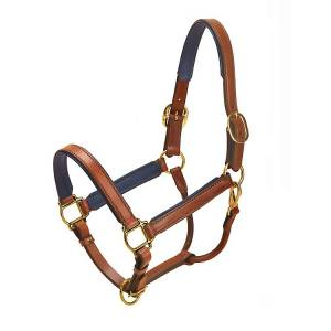 Tory Leather Padded Leather Halter