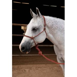 Professionals Choice Easy On Rope Halter with Lead