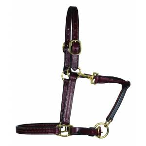 Schutz by Professionals Choice Leather Halter
