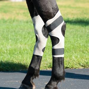 Weaver Leather CoolAid Equine Icing andCooling Hock Wraps