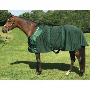 Back on Track Therapeutic Mesh Horse Sheet