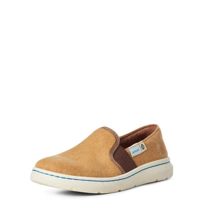 Ariat Ladies Eco Ryder Shoes