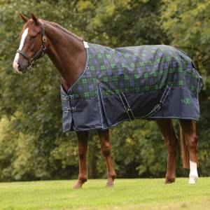 Saxon 1200D With Gusset Standard Neck Heavy Weight II Turnout Blanket