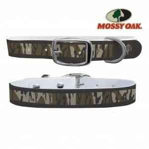 C4 Dog Collar Mossy Oak - Bottomland Heritage Dark Stripes Classic Collar