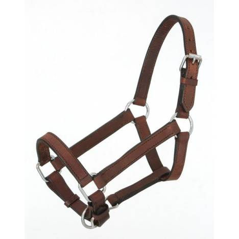 Royal King Miniature Leather Halter
