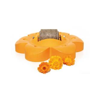 Officinalis Flower with Lolly Roll - Orange:Carrot/Marigold