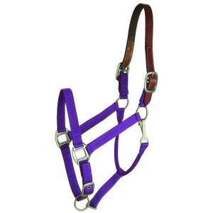 Gatsby Nylon Breakaway Halter with Snap - 12pc Assortment