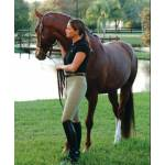 Ovation Ladies Pullon Breech