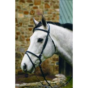 Henri de Rivel Padded Dressage Bridle with Flash