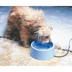 Allied Precision Inc. Plastic Heated Pet Bowl