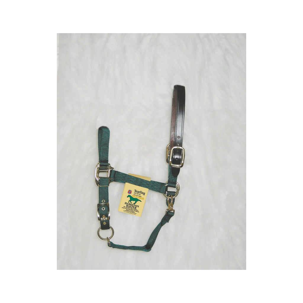 Hamilton Horse Halter with Leather Crown