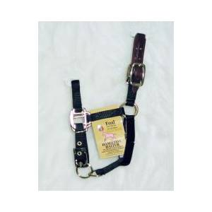 Hamilton Foal Halter with Leather Crown