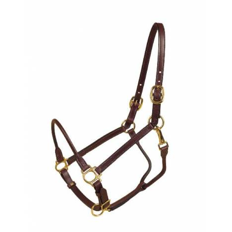 TORY LEATHER Halter - Rolled Nose & Throat