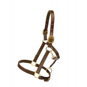 TORY LEATHER Triple Stitched Cob Halter - Flat Throat & Brass Hardware