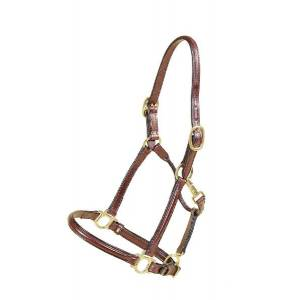 TORY LEATHER Deluxe Raised Halter - Brass Hardware