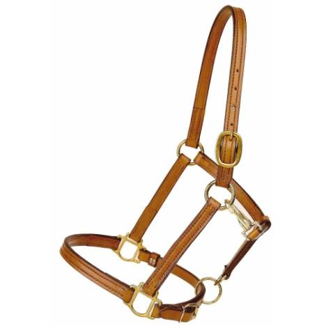 "TORY LEATHER 3/4"" Halter - Crown Buckle & Brass Hardware"