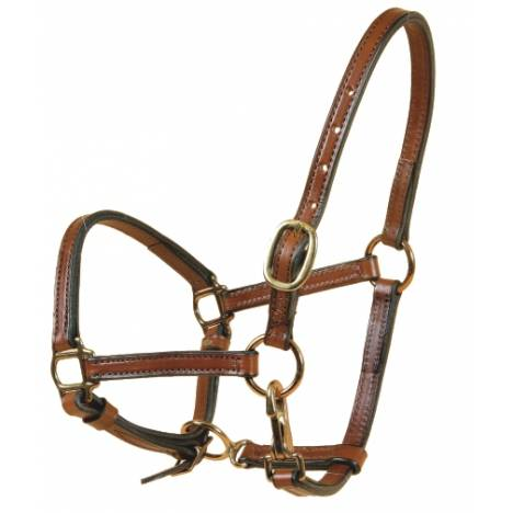 "TORY LEATHER 5/8"" Halter - Crown Buckle & Brass Hardware"