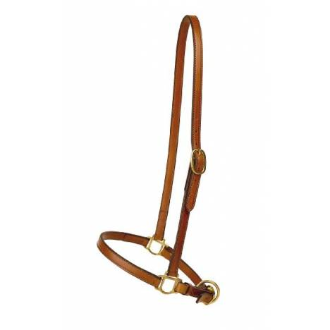 "TORY LEATHER 3/4"" Grooming Halter - Brass Hardware"
