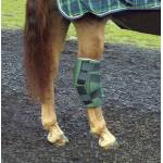 Cashel Horse Equipment