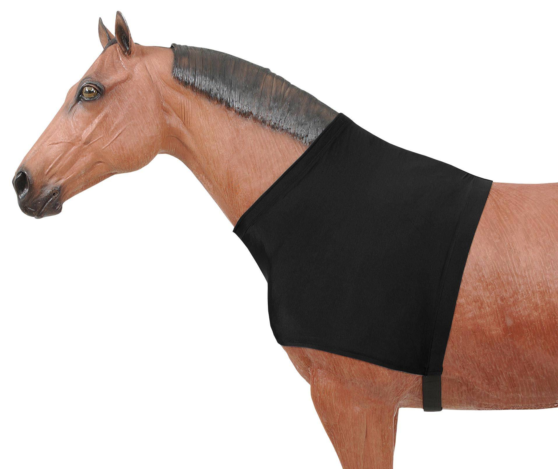 Tough 1 Black Nylon Pull On Shoulder Guard Fits Cob and Full Size Horse
