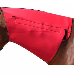 Yearling Neck Sweat