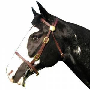 Shenandoah Beta Light Trail Bridle