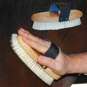 Intrepid Elite Natural Pig Bristle Brush