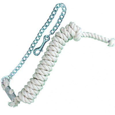 Intrepid White 6' Cotton Lead with Chain