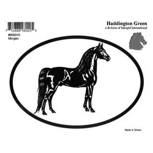 Decal - Morgan - Pack Of 6