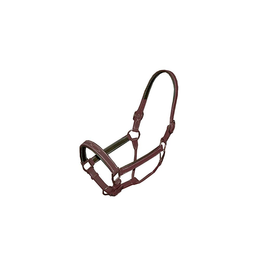 Fancy Stitched Leather Halter