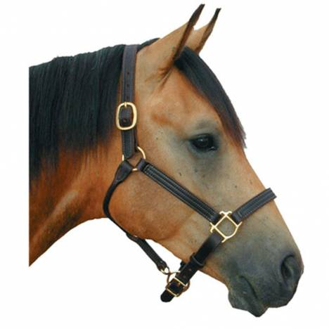 Deluxe Leather 1 Track Halter