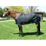 Stable Sheets