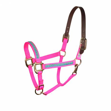 Perri's Leather Ribbon Safety Halter - Flamingos