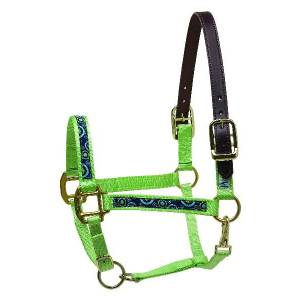 Perris Ribbon Nylon Safety Halter