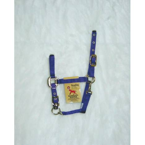 Hamilton Weanling Halter with Adjustable Chin and Snap