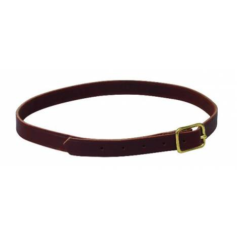 Perris Leather Collection 7/8in x 40in Horse Neck Strap