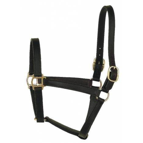 Perris Leather Collection Track Style Leather Turnout Halter