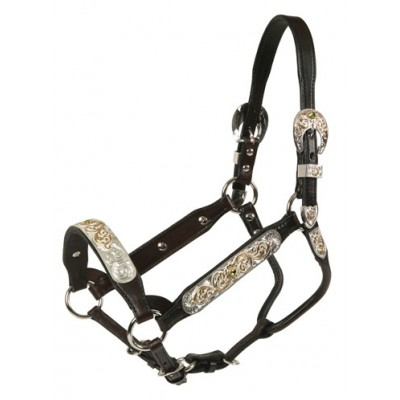 Tory Leather San Diego Congress Style Show Halter & Lead