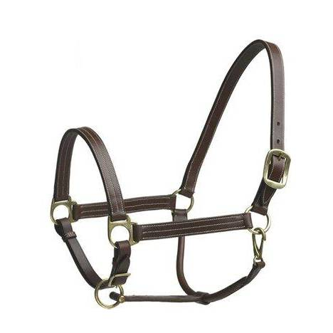 Camelot Stable Halter Horse