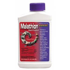 Malathion 50e Concentrate