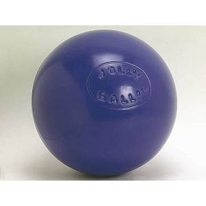 Jolly Pets Push-N-Play Jolly Ball