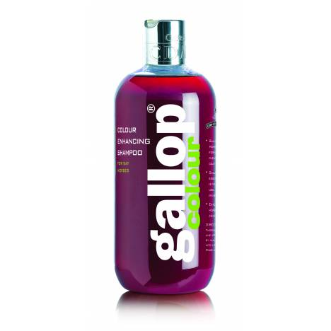 Gallop Color Enhancing Shampoo by Carr & Day & Martin