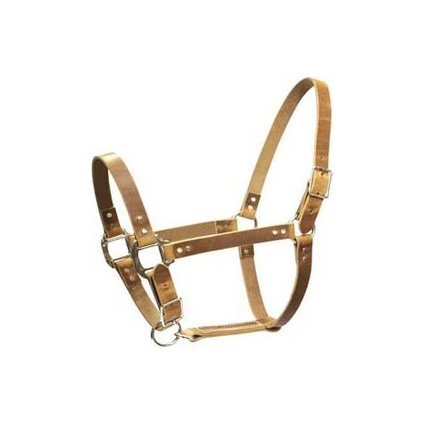 Abetta Harness Leather Halter with Catch Strap