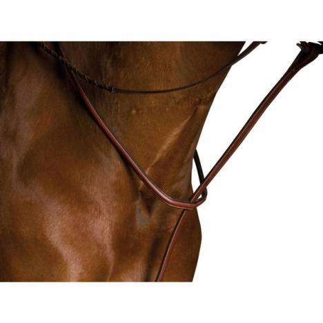 Kincade Raised Standing Martingale