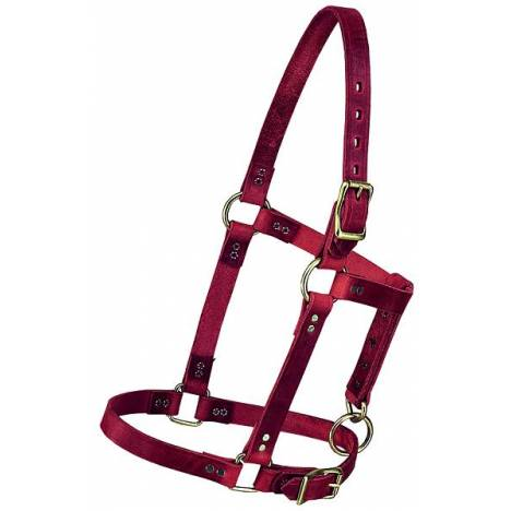 "Weaver 3/4"" Riveted Halter"