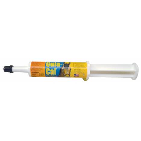 Finish Line Quia-Cal Paste Syringe