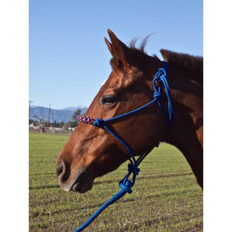Kensington Rope Halter Set