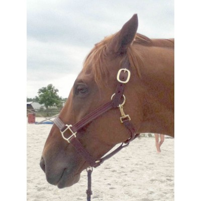 Pro-Trainer USA Leather Show Halter