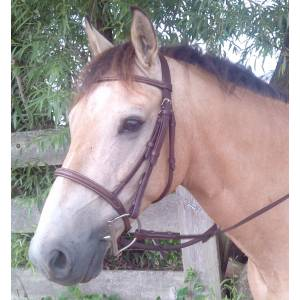 ProAm Fancy Raised Bridle with  Reins